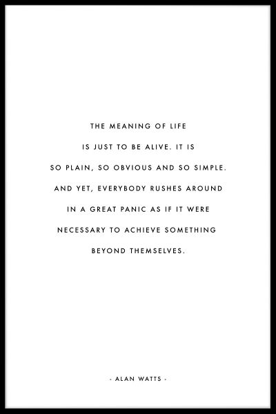 Meaning of Life Plakat