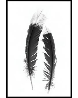 Feather Black & White Plakat