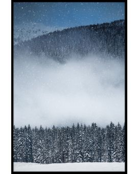 Winter View Forest Plakat
