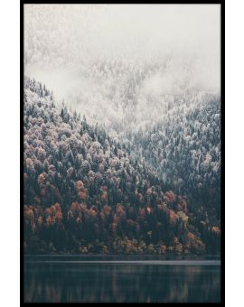 Foggy Forest Lake Plakat