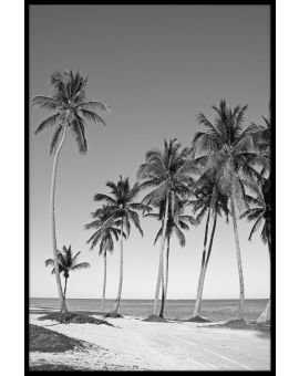 Black & White Beach N02 Plakat