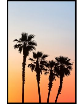 Palm Sunset Plakat