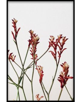 Abstract Botanical N02 Plakat