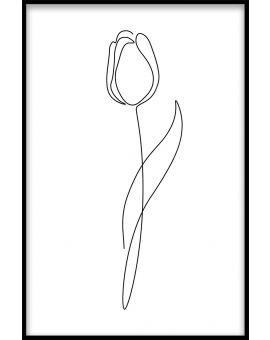 Line Art Flower N02 Plakat